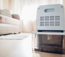 Dehumidifier small
