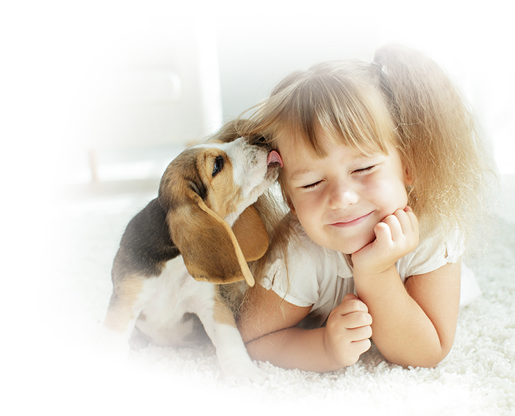 Puppy and little girl on floor in a healthy home